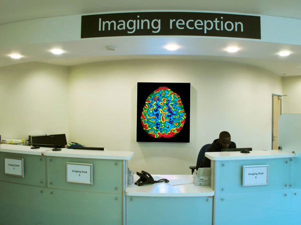 Meditating Brain. Royal Free Hospital